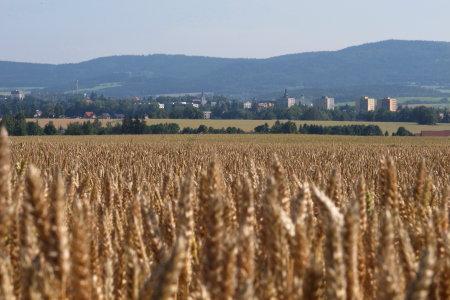 Pohled přes pole naBroumov